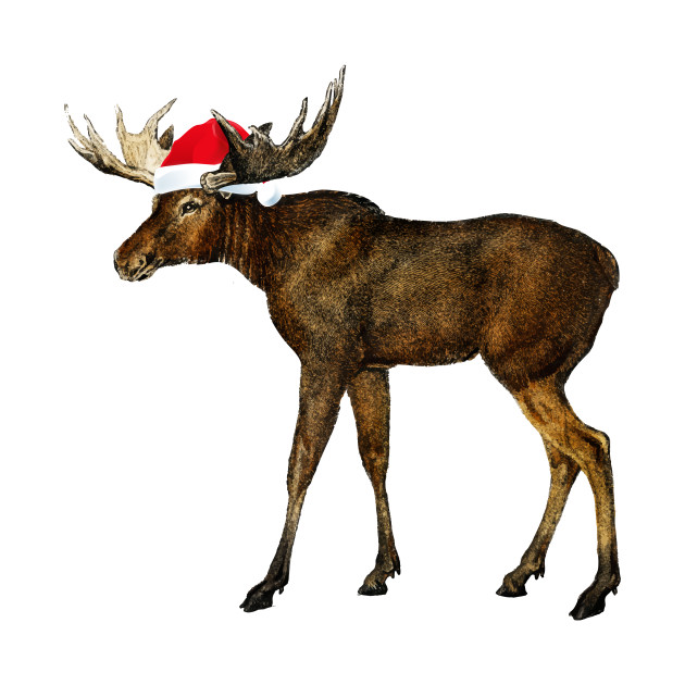 3c814b1912c82 Christmas Pajama Christmas Moose Wearing Santa Hat Shirt - Christmas ...