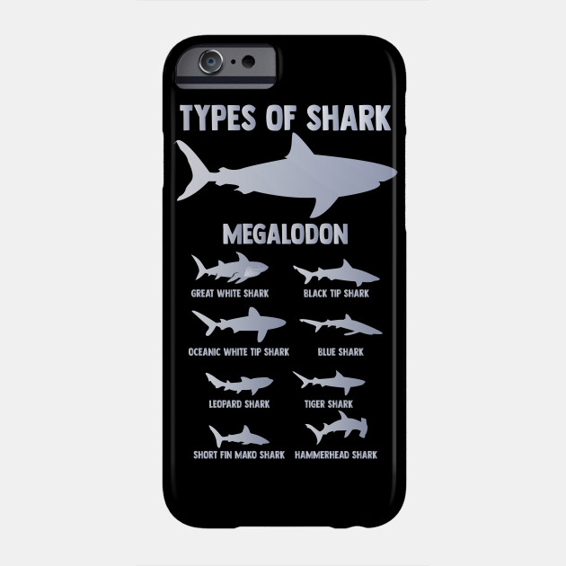 Different Types Of Sharks Design