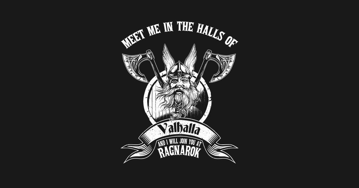 Odin or Wodan Valhalla Viking Warrior Ragnar Norse T-Shirt T-Shirt f1e10da59