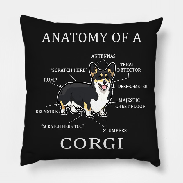 Anatomy Of A Corgi Anatomy Of A Corgi Funny Dog Pillow Teepublic