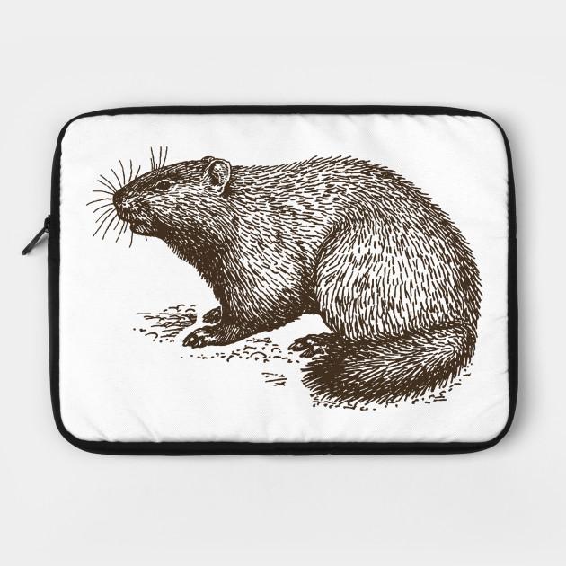 Vintage Groundhog