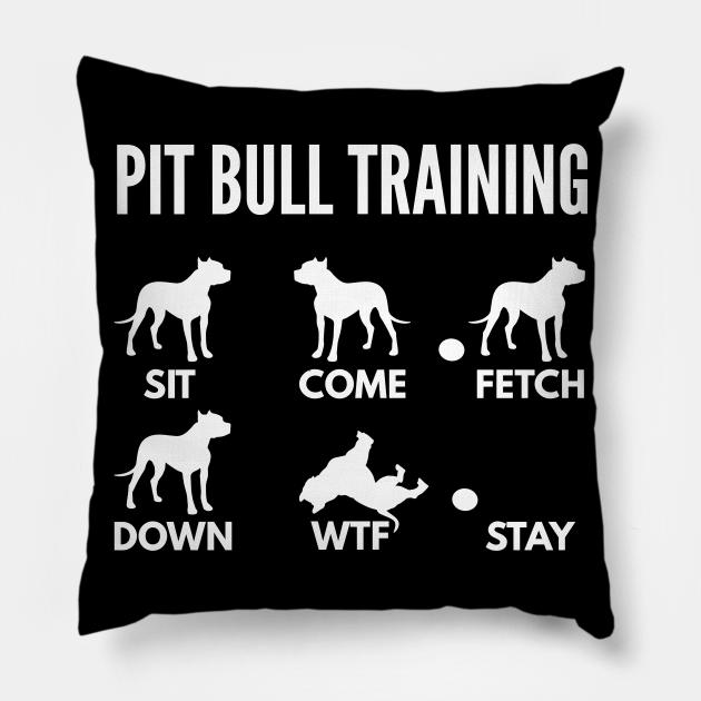 Pit Bull Training Pit Bull Dog Tricks