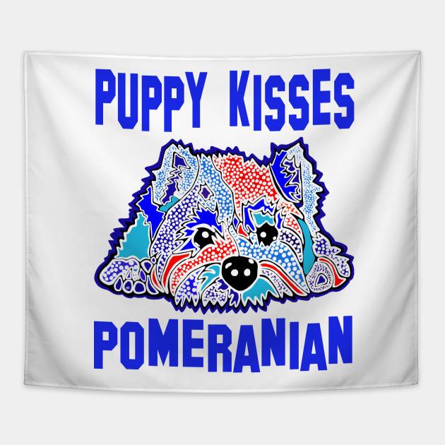 Pomeranian Pomeranians Puppy Kisses Terrier Terriers Puppies Dog Pet