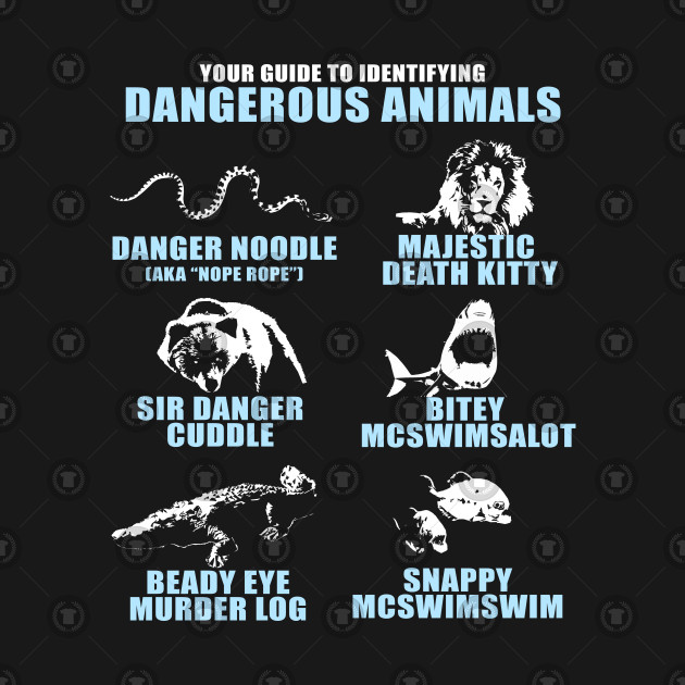 Your Guide to Identifying Dangerous Animals