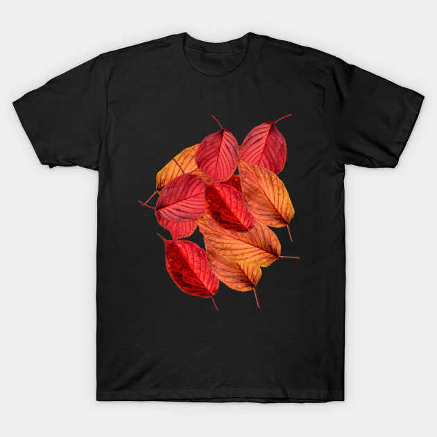 Fall Autumn Season Red Leaves Simple Time Nature T-Shirt