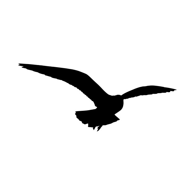 LIMITED EDITION. Exclusive Seagull (Silhouette) - Seagull ...