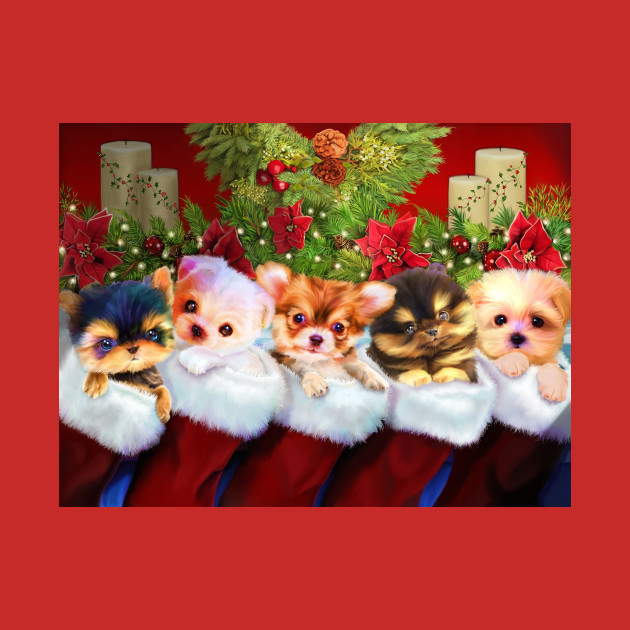 Christmas Puppies.Adorable Puppies In Christmas Stockings