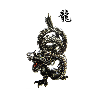 Yin Yang Dragon T Shirts