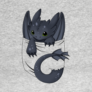 Is that a dragon in your pocket? t-shirts