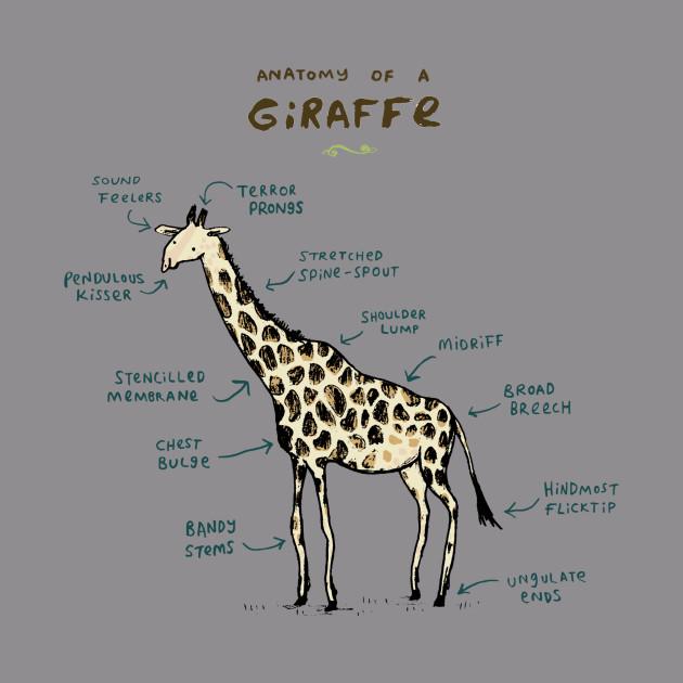 Anatomy of a Giraffe
