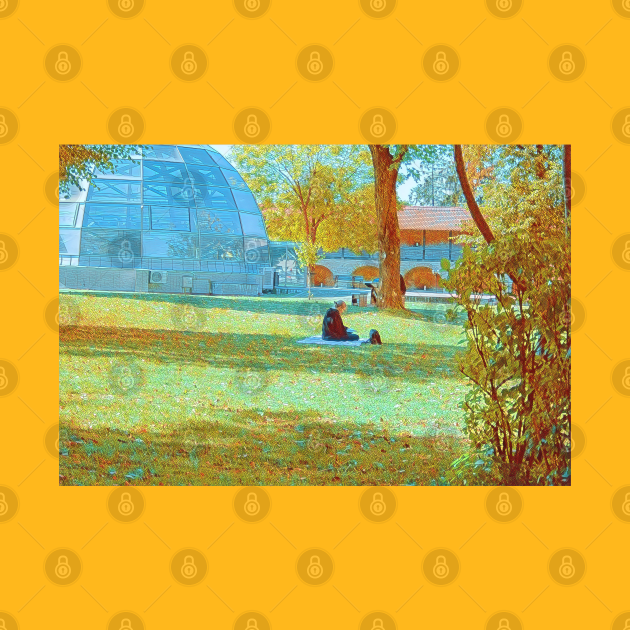 Girl reading in a park, Fall scenery and vibe