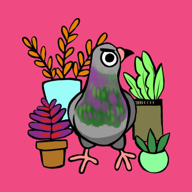Succulent Pigeon