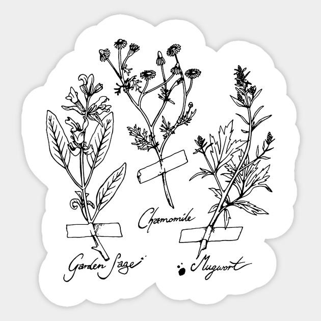 Witch S Herbs Herbs Plants Sticker Teepublic