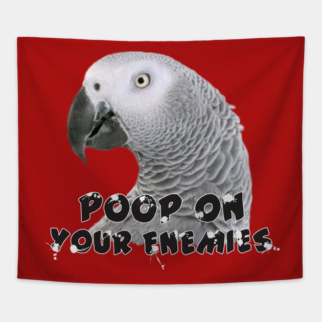 African Grey Parrot Poop on Enemies
