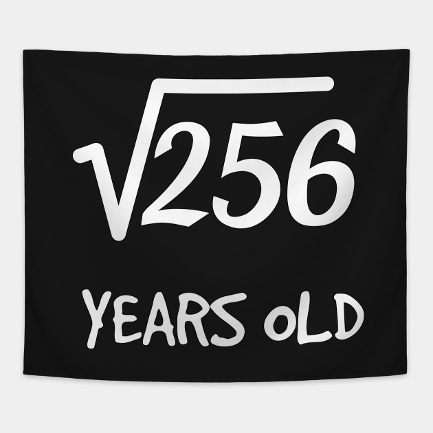 Square Root Of 256: 16th Birthday 16 Years Old Teen Boy