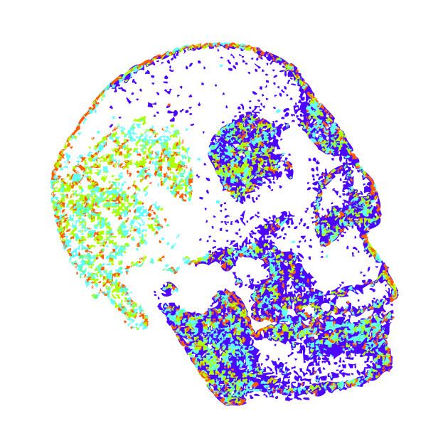 Multi Colored Skull