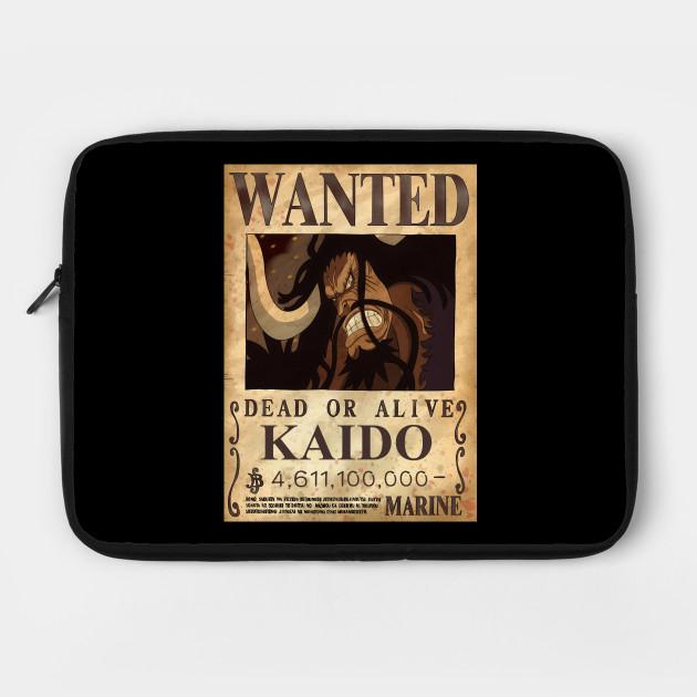 Kaido bounty