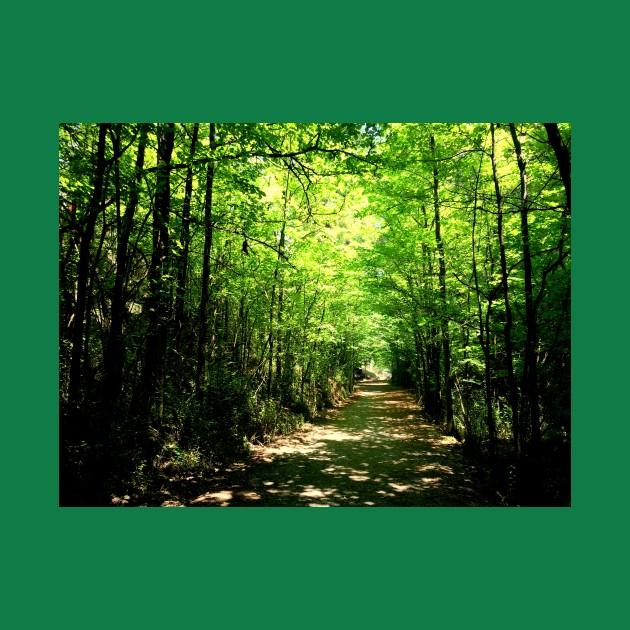 Yarrangobilly Path