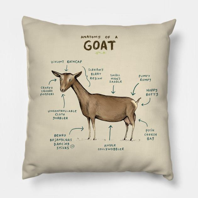 Anatomy Of A Goat Anatomy Pillow Teepublic