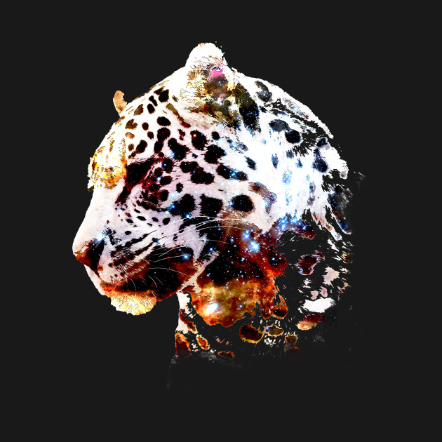 Space Cheetah