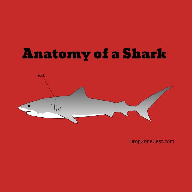 Anatomy Of A Shark Anatomy Of A Shark Kids T Shirt Teepublic