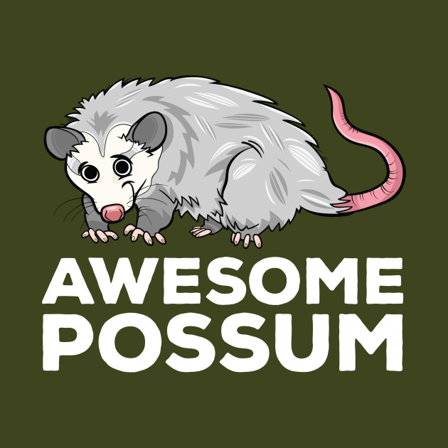 Awesome Possum Funny Pun Awesome Possum Kids T Shirt Teepublic