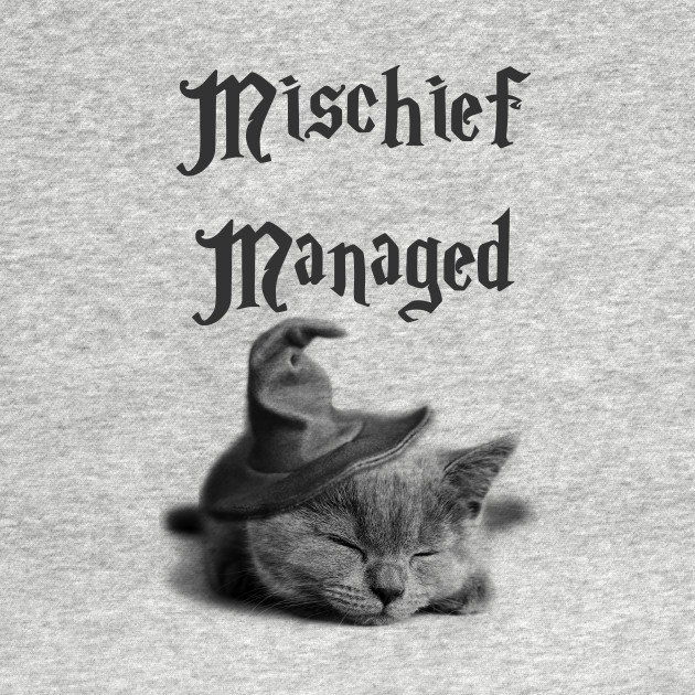 Mischief Managed Cat