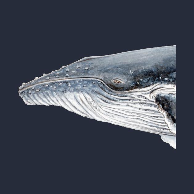 Humpback whale portrait