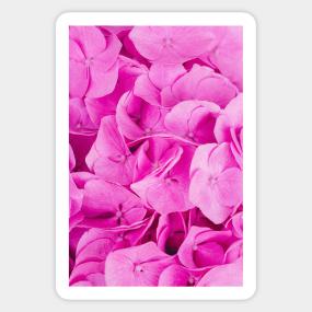 Pink flowers stickers teepublic pink floral pattern sticker mightylinksfo