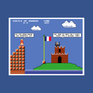 Super Mario Bros Meets The French Taunter