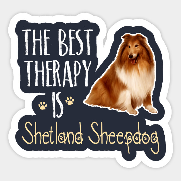 The Best Therapy Is Shetland Sheepdog