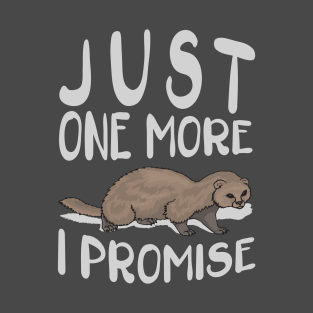 9252999d9 Just One More Ferret I Promise T-Shirt