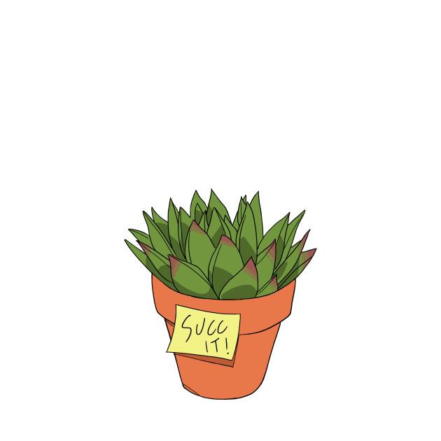 Succ It! Succulent