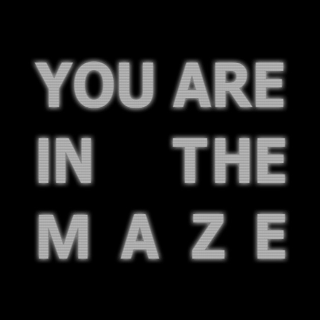 You are in the maze