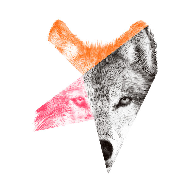 Wild 2