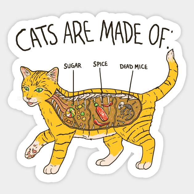 Cat Anatomy - Cats - Sticker | TeePublic