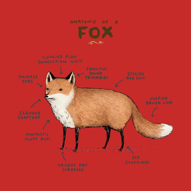 Anatomy Of A Fox Lol T Shirt Teepublic