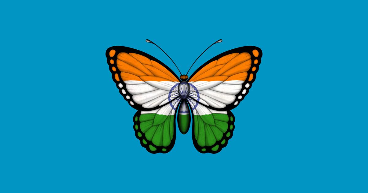 Indian Flag Butterflies