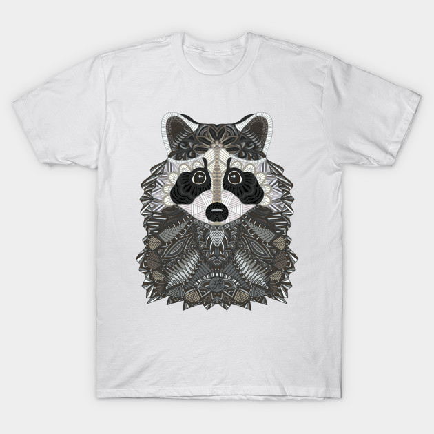528a467dd0 Cute Raccoon