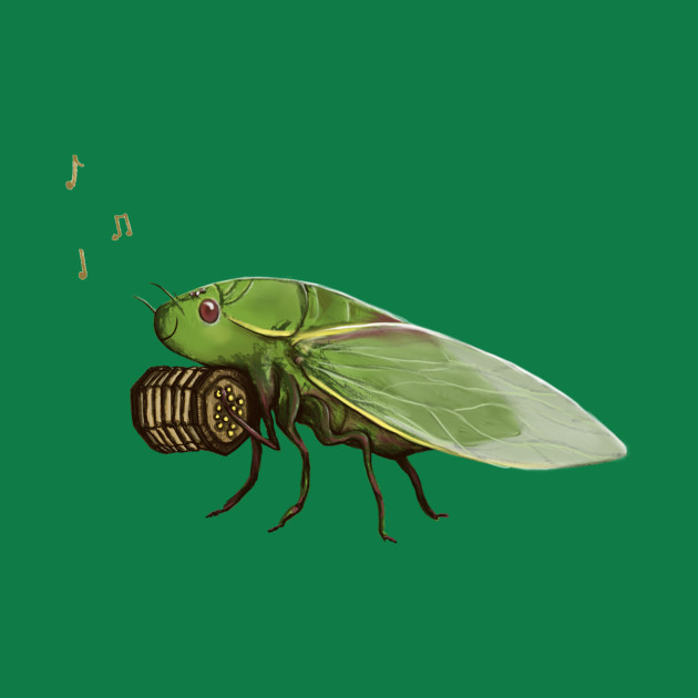 Cicada Playing a Squeezebox
