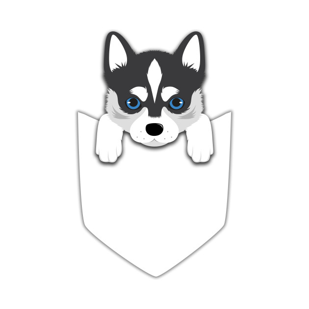 554bbb10 Funny Siberian Husky In Your Pocket Funny Siberian Husky In Your Pocket