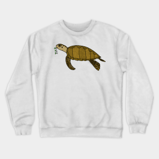 Armenia Flag Sea Turtle Kid Boys Girls Long Sleeve Sweatshirts Pullover Hoodie 2-6T