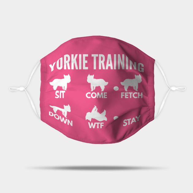 Yorkie Training Boxer Dog Tricks