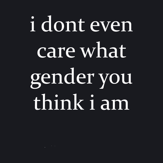 I Don't Even Care What Gender You Think I Am Funny T-shirt