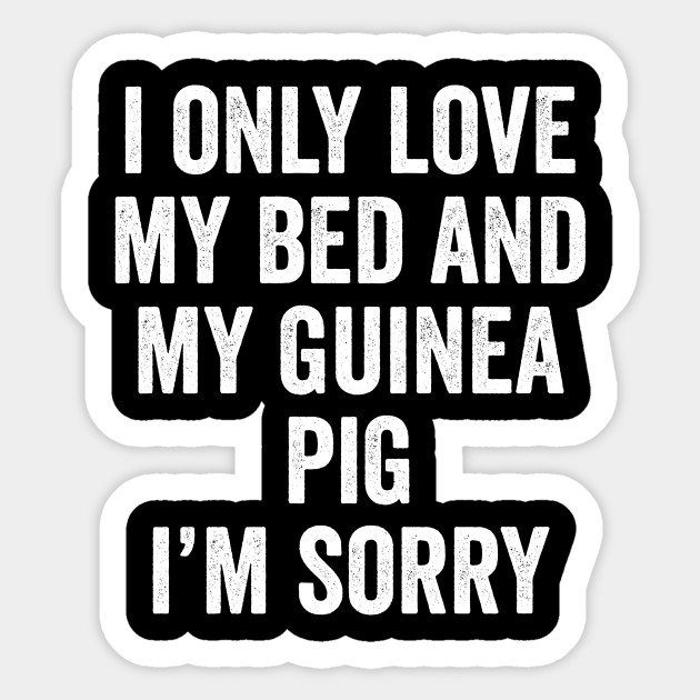 I Only Love My Bed And My Guinea Pig I M Sorry