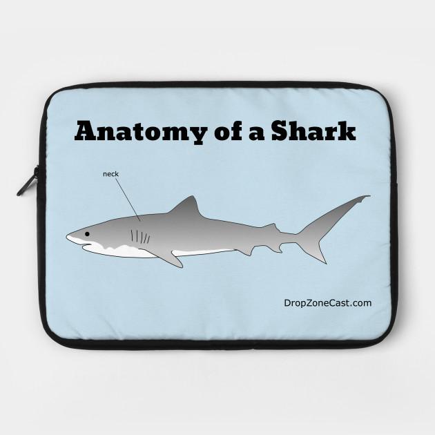Anatomy Of A Shark Anatomy Of A Shark Laptop Case Teepublic