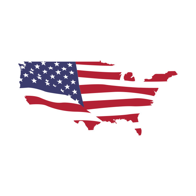 LIMITED EDITION. Exclusive USA Map Flag (Without Alaska, Puerto Rico ...