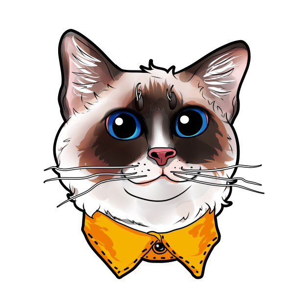 Ragdoll Cat Face Cats funny cute sweet Kitty gift