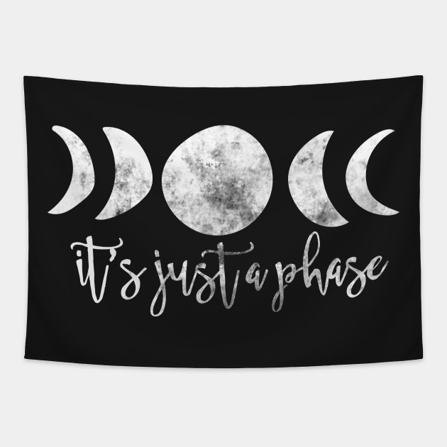 It's just a phase moon phases