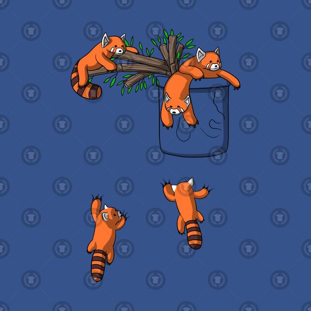 Red Panda Bears Pocket Playing Funny Cute Animals